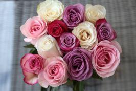 etchegaray_servane_mariage_mai16_9