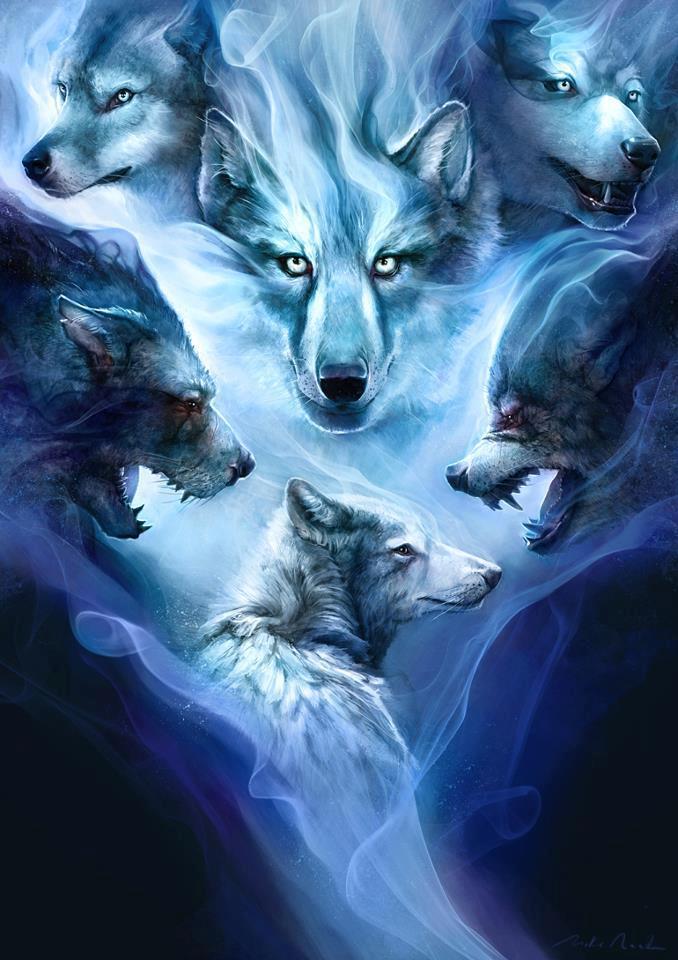Nice Girl Hd Wallpaper Download A Wolf S Life Art Id 45089 Art Abyss