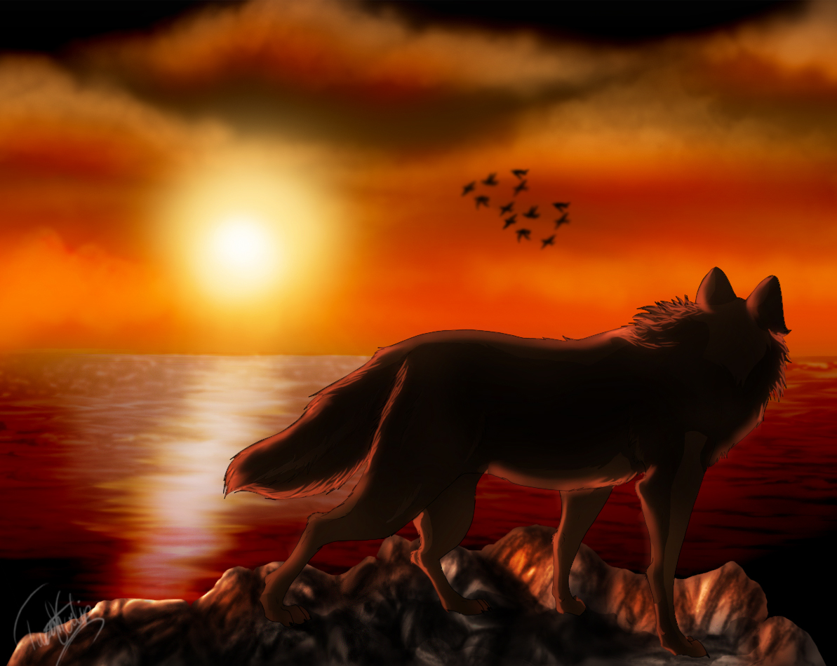 Bad Girl Wallpapers Hd Wolf Art Id 7466 Art Abyss