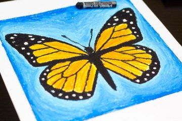 oil pastel butterfly step 12