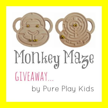 Monkey Marble Maze by Pure Play Kids