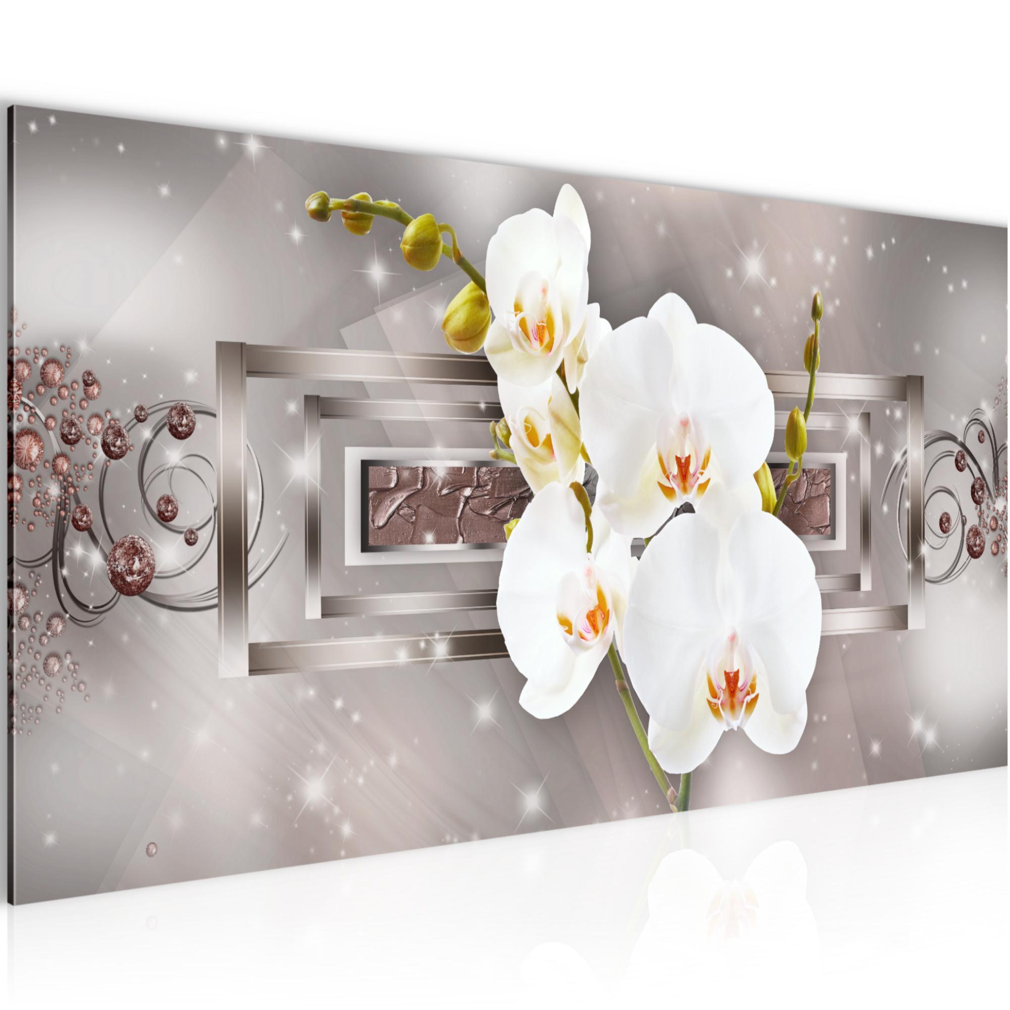 orchideen bilder leinwand blumenbild auf leinwand oder kunstdruck pr chtiger lila orchidee. Black Bedroom Furniture Sets. Home Design Ideas