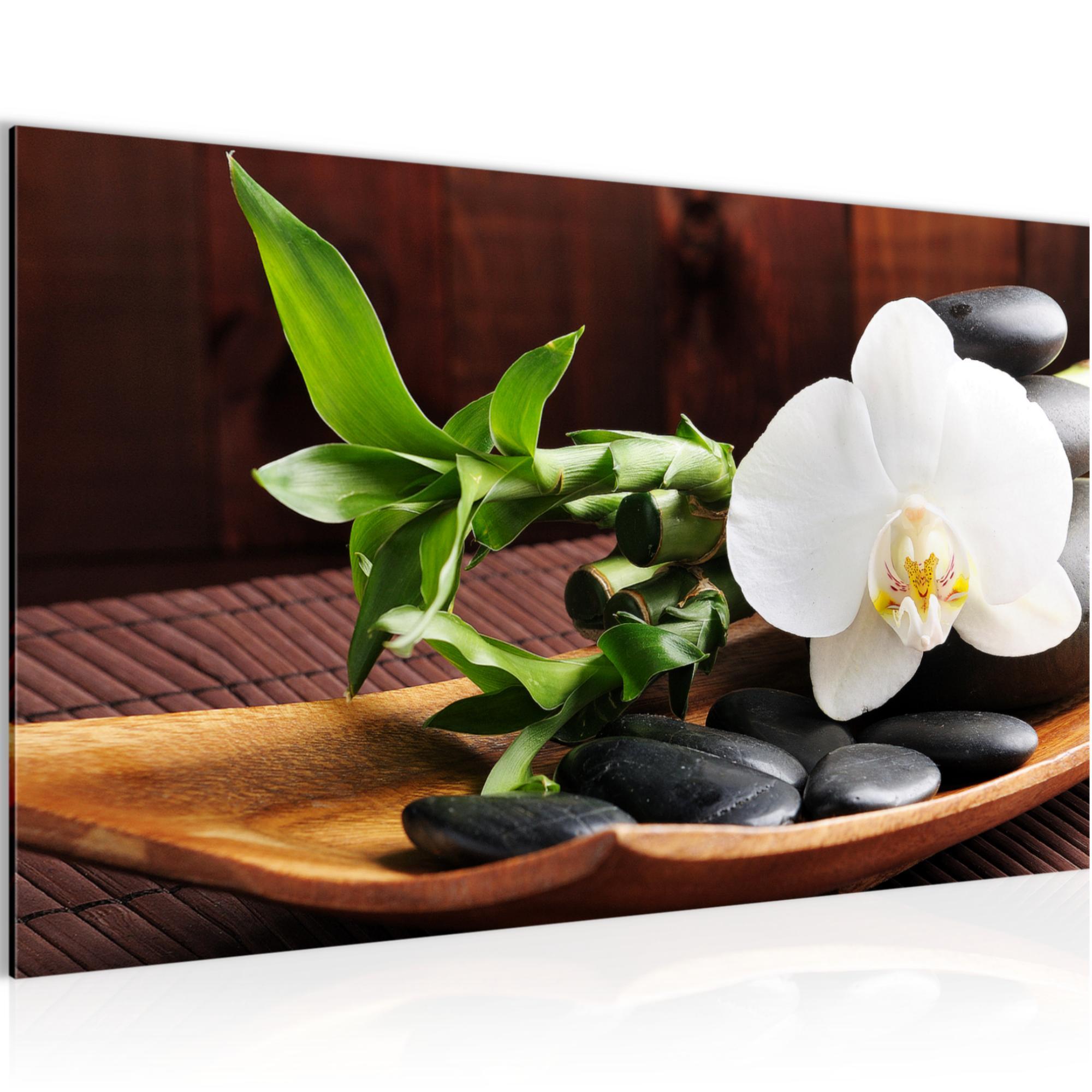Orchideen Schlafzimmer Feng Shui | Schlafzimmer Nach Feng Shui ...