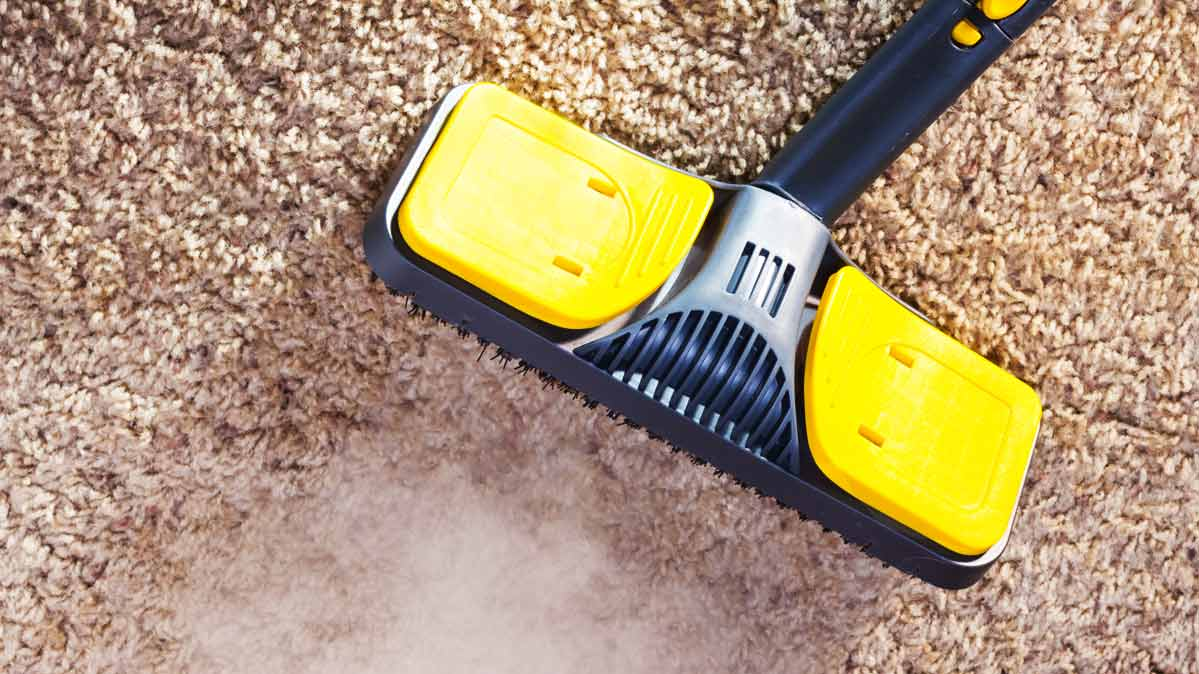 Carpet Cleaning Carpet Cleaning Rent Hire Or Buy Consumer Reports