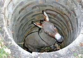 掉到井裡的驢子