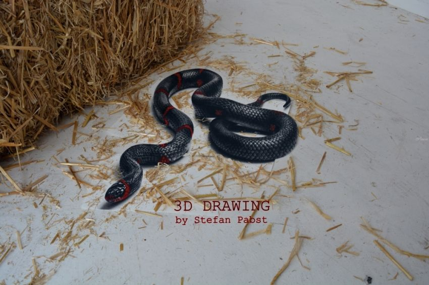 Snake in 3D Amazing Drawings / Sketch,Illustration by Stefan Pabst