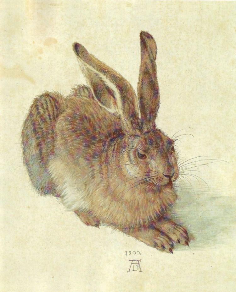 アルブレヒト・デューラーの画像 p1_35