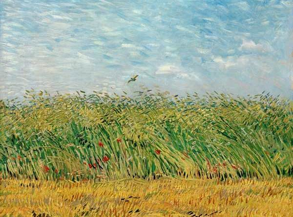 campo grano con allodole_van gogh_impress