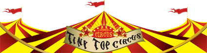 Tiny Top Circus Banner