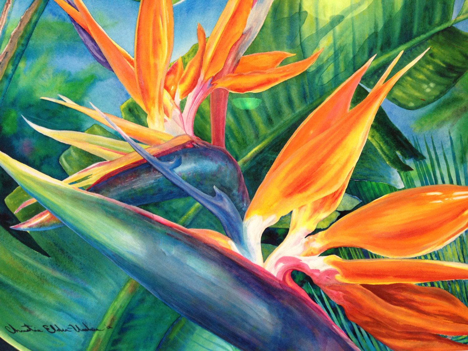 Tropical Artwork Tropical Flowers Paintings