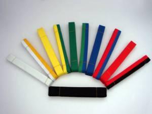ceintures et grades au Taekwondo