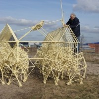 The strandbeest is in Exeter – Theo Jansen's wind-powered mechanical animal sculpture to patrol the city streets