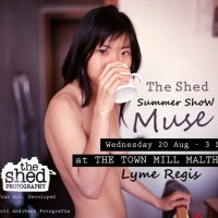 Inspired by your muse? Submit to the Shed's summer show