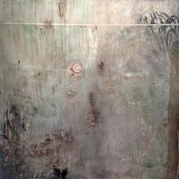 Surrendered Textures: Patricia Larsen