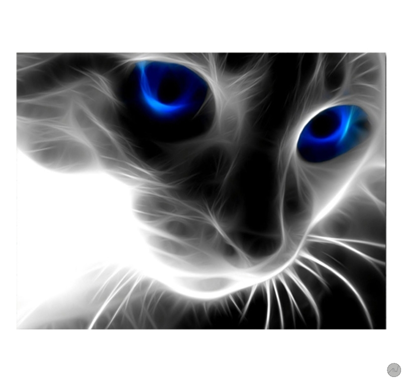 Really Cool 3d Wallpapers Tableau Abstrait Abstract Cat