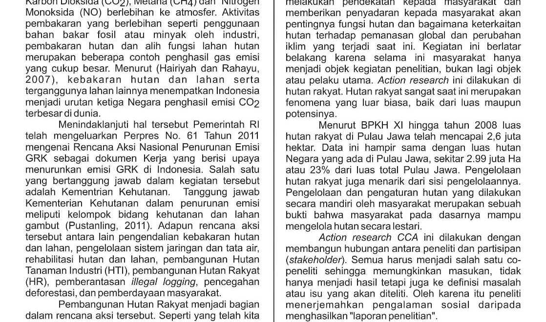 Brief Info Terong