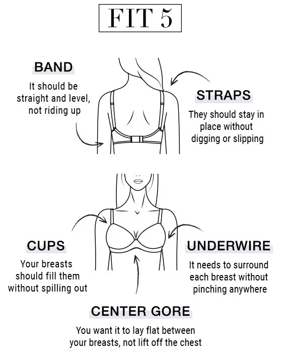 How to Measure Bra Size at Home Bra Size Chart Bare Necessities