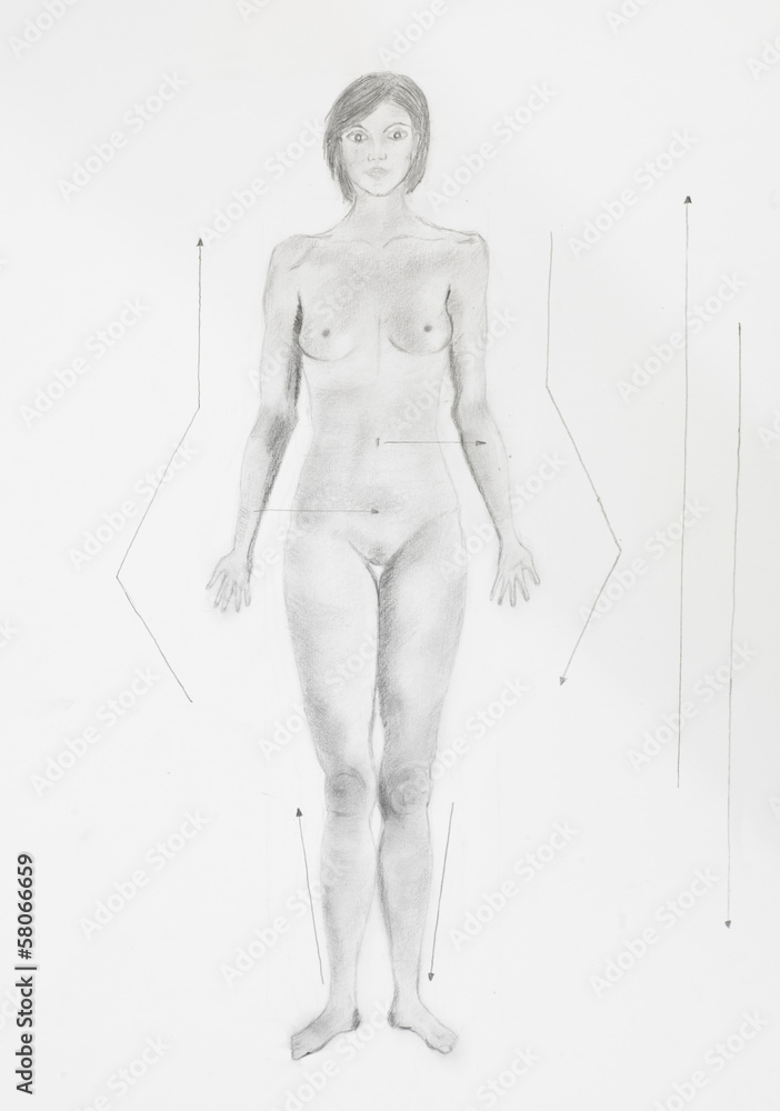 Photo  Art Print detail of conventional anatomical position women