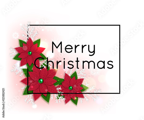 Merry Christmas Card Template with Poinsettia Vector illustration