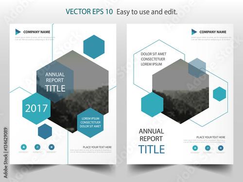 Blue hexagon Vector business proposal Leaflet Brochure Flyer