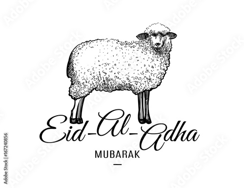 Eid-al-adha greeting card template with hand drawn sheep isolated on
