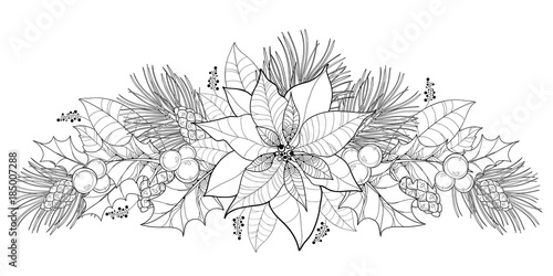 Vector contour Poinsettia flower or Christmas Star in black isolated