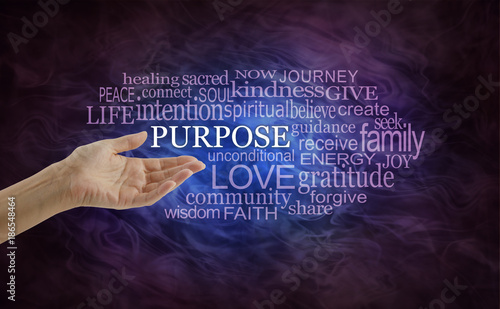 Let\u0027s look at Life\u0027s Purpose Word Cloud - female hand open palm