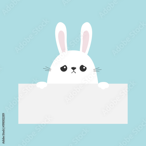 White sad bunny rabbit hanging on empty paper board template Funny