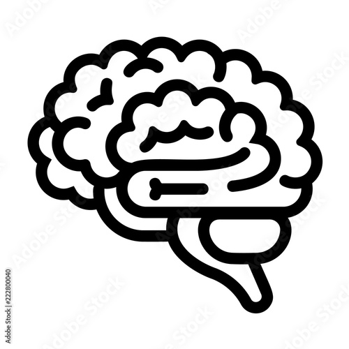 Brain icon Outline brain vector icon for web design isolated on
