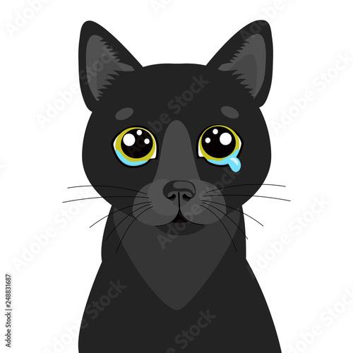 Sad Black Cat Vector Icon Illustration Of Cute Sad Animal Drear