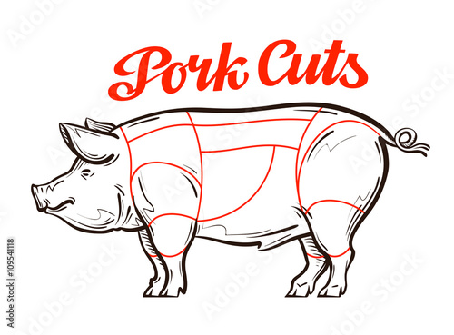 vector pork, pig chart meat cuts, butcher shop - Buy this stock