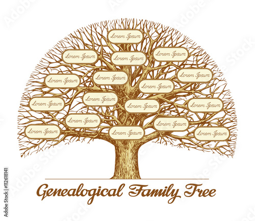 Vintage Genealogical Family Tree Hand drawn sketch vector