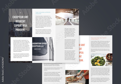 Professional Trifold Brochures  Buy this stock template and explore