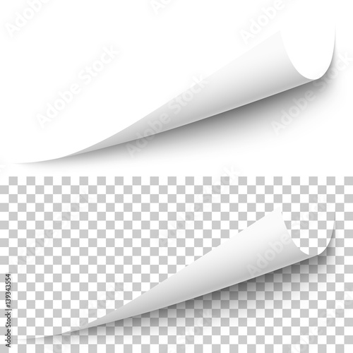 Vector realistic white paper corner with shadow on transparent