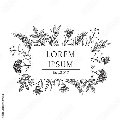 Organic white black tea shop label template, vector hand drawn