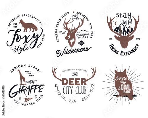 Wild animal badges set Included giraffe, owl, fox and deer shapes