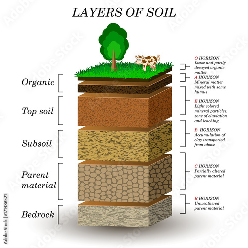 Layers of soil, education diagram Mineral particles, sand, humus