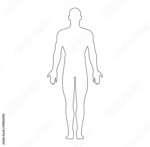 Anatomical Position Anterior View Male Body Outline Vector