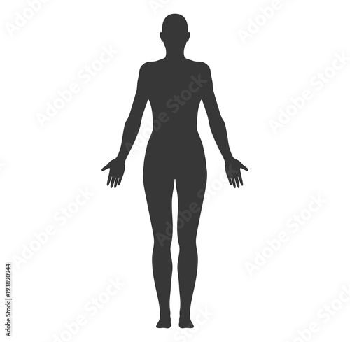 Anatomical Position Anterior View Female Body Shape Vector