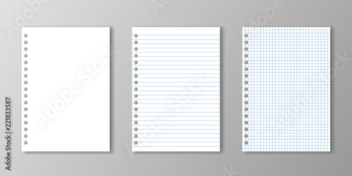 Blank paper, lined paper and square paper with holes on grey