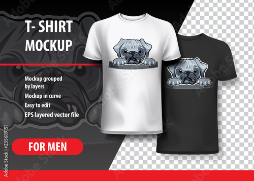 Angry Pug in pocket T-shirt template Vector Graphics - Buy this
