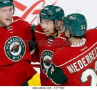 st-paul-minn-3rd-dec-2015-the-minnesota-wilds-matt-dumba-24-celebrates-f7yymc