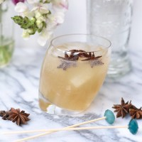 Pisco Cocktail with Anise Simple Syrup