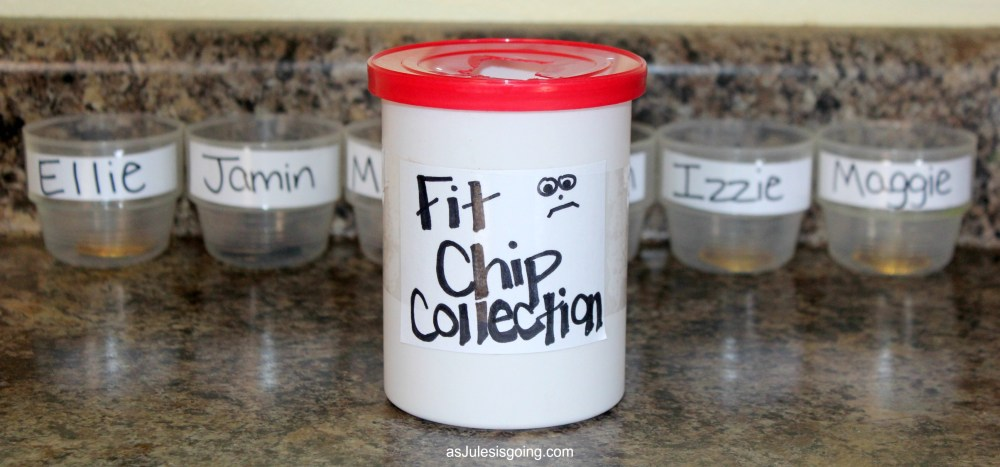 Fit Chip [has nothing to do with fitness] Strategy to minimize Fit-Throwing, tantrums, melt-downs, whatever you want to call them within families with lots of littles and Lots Of Fits