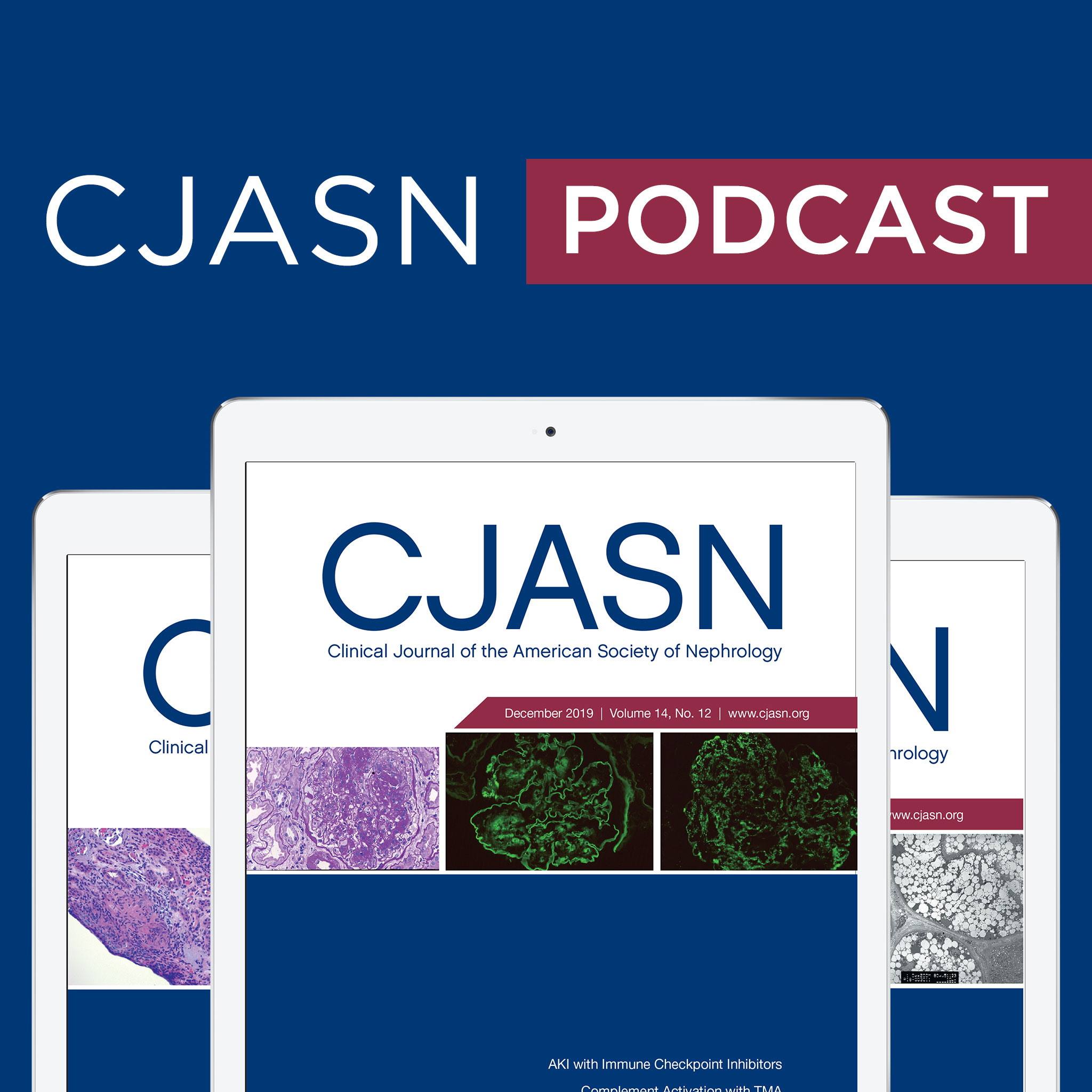 Journal Of Clinical Clinical Journal Of The American Society Of Nephrology Cjasn By