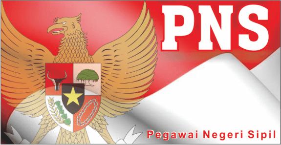 PNS 2