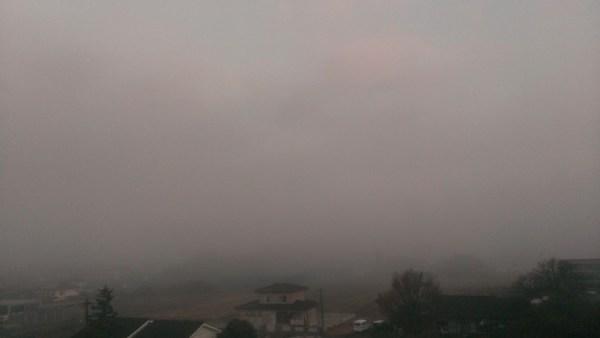 朝霧のなか