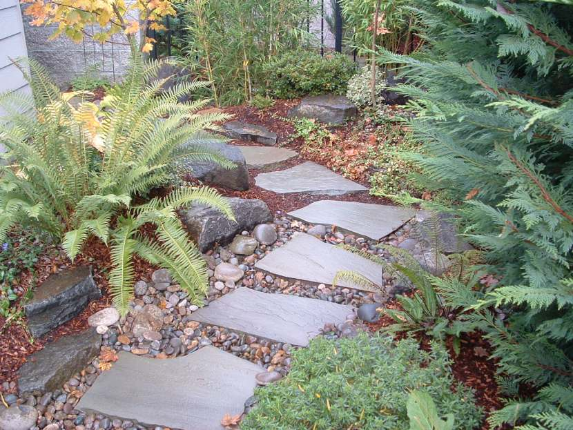 intimate shade garden