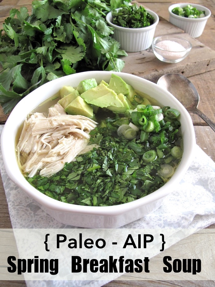 Paleo French Spring Soup