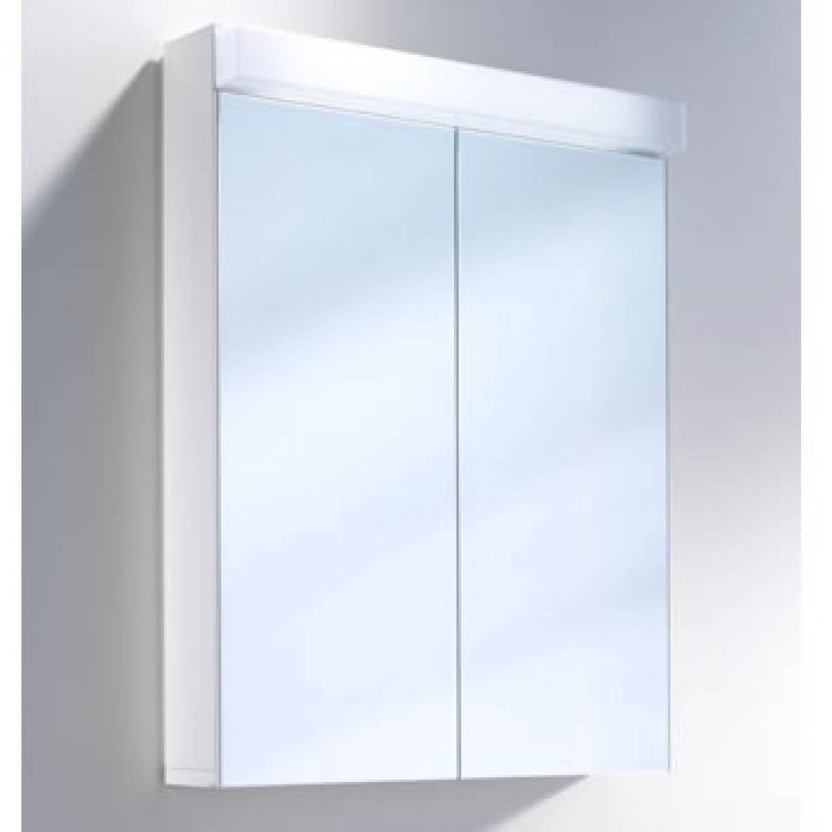 Lowline Cabinet Schneider Lowline 600mm 2 Door Mirror Cabinet With